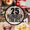 25 Reindeer Desserts