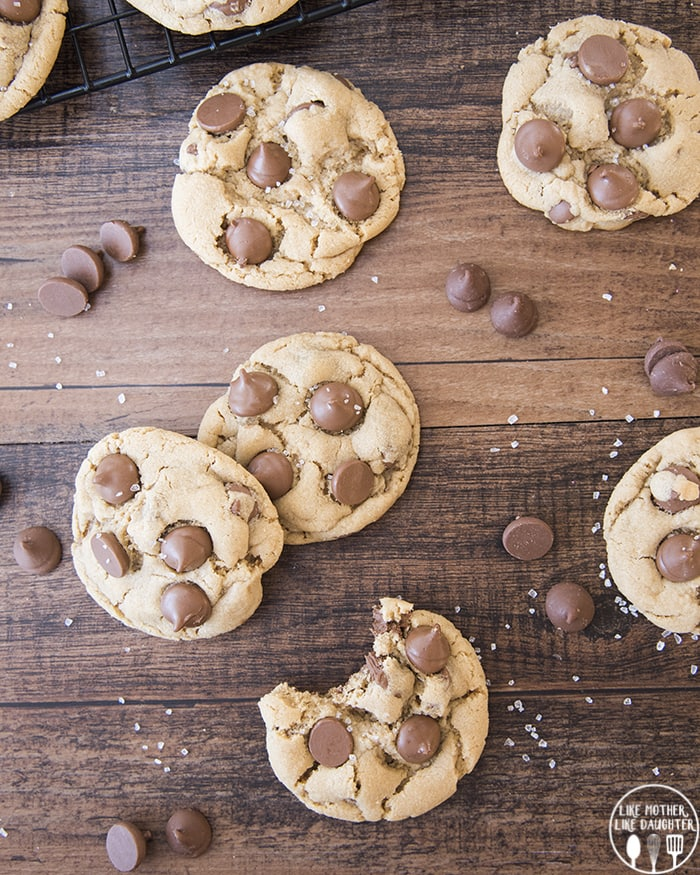 Peanut Butter Chocolate Chip Cookie Recipes