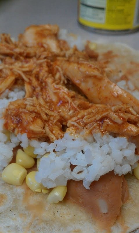 Red Sauce Chicken Enchiladas