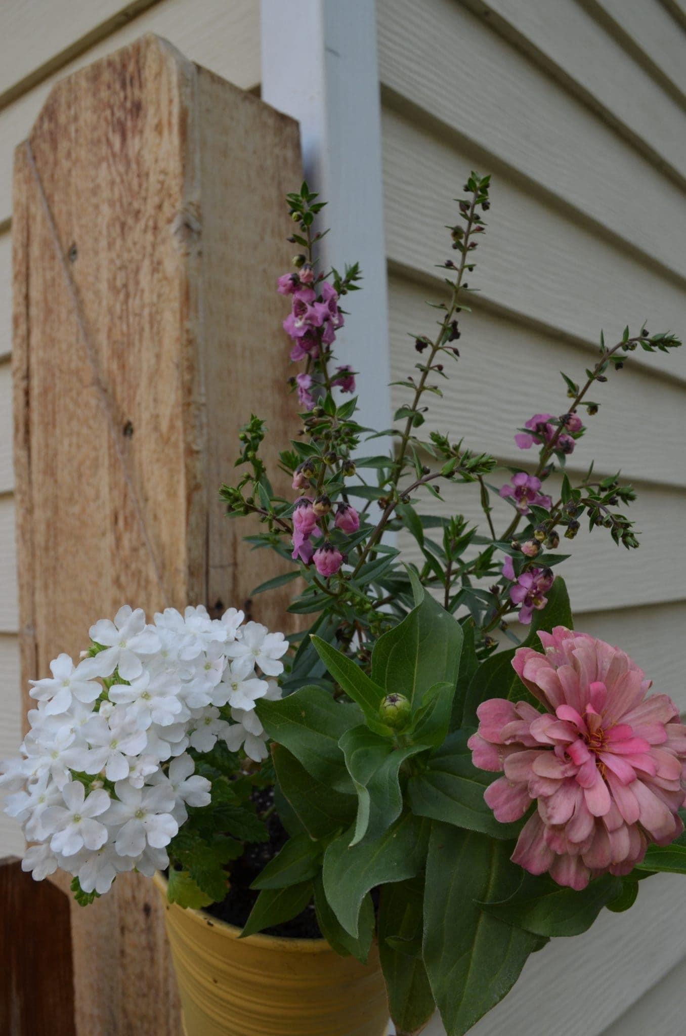 DIY Hanging Flower Pots