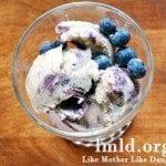Banana Blueberry Swirled Ice Cream