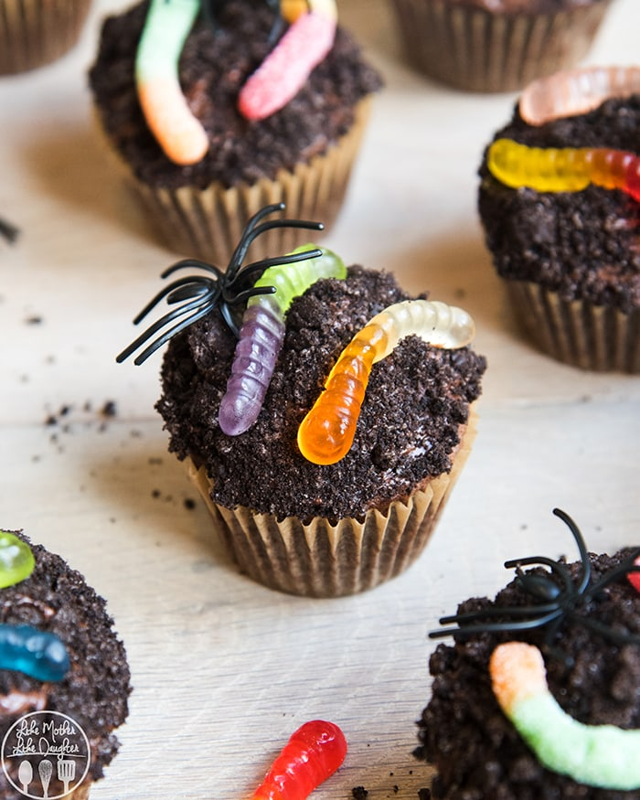 Chocolate Cupcakes made to look like dirt