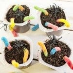Creepy Crawly Dirt Snack Pack Pudding Cups
