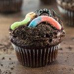 Dirt Cupcakes