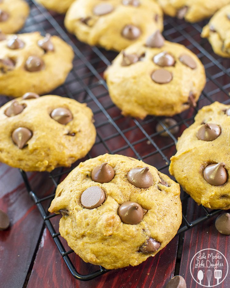 pumpkin chocolate chip cookies1