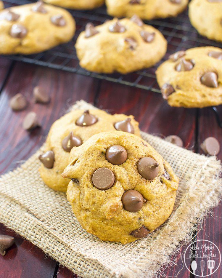 pumpkin chocolate chip cookies2