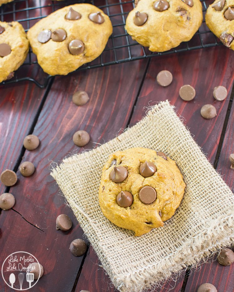 pumpkin chocolate chip cookies3