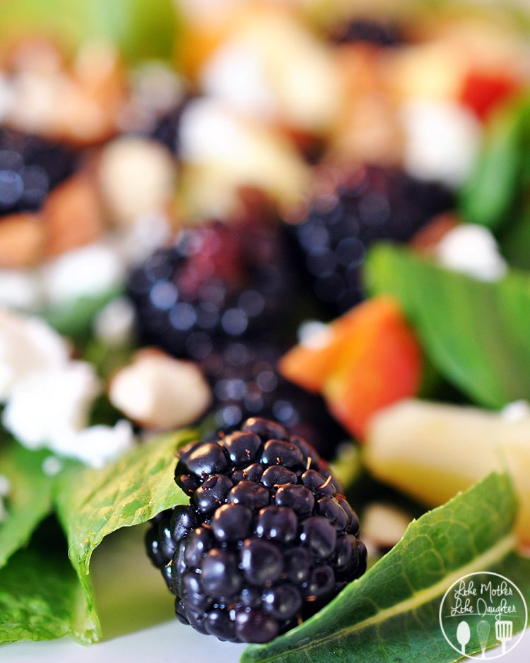 Blackberry Apple Salad with Blackberry Vinaigrette - Like ...