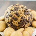 peanut butter cheese ball 1 square