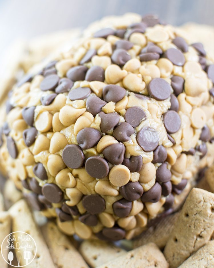Peanut Butter Cheese Ball - a delicious dessert cheeseball, with smooth peanut butter, cream cheese, powdered sugar and covered in chocolate and peanut butter chips for a delicious dessert spread perfect on cookies, pretzels or graham crackers!