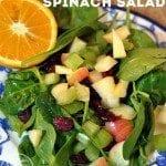 Cherry Apple Spinach Salad
