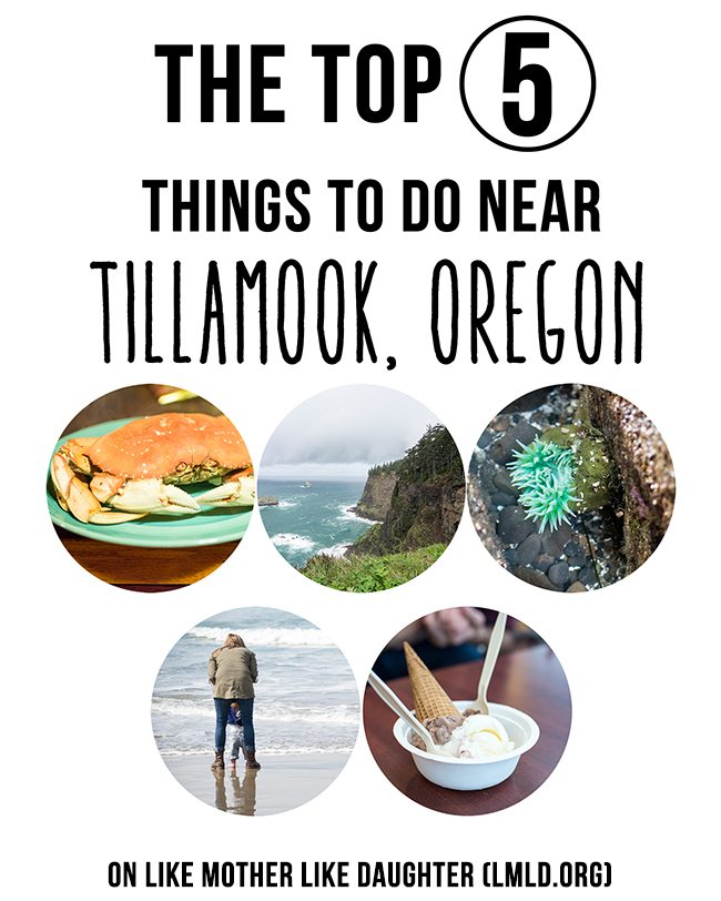 the top 5 tillamook smaller