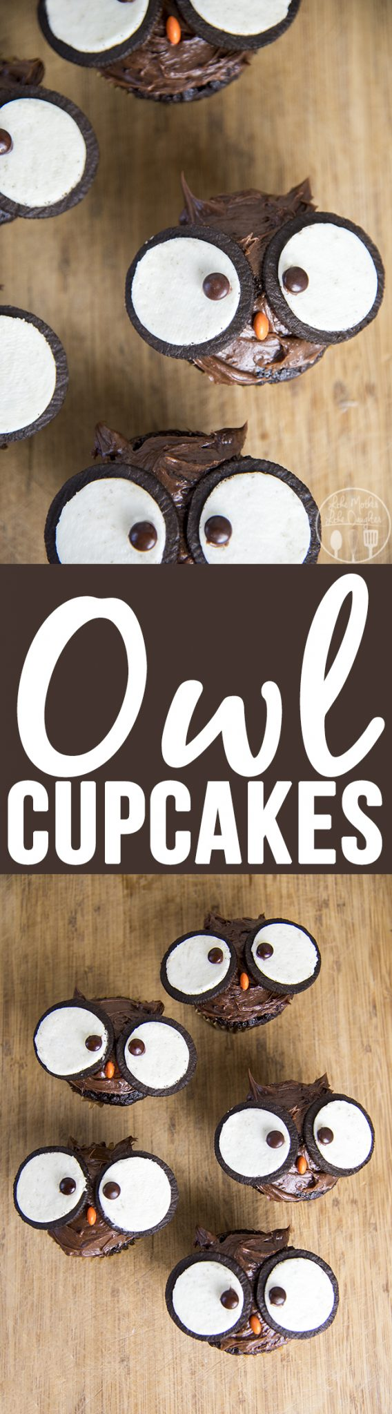 Owl cupcakes are adorable cupcakes topped with chocolate frosting, oreo cookies and m&ms that are perfectly fun and delicious to eat!