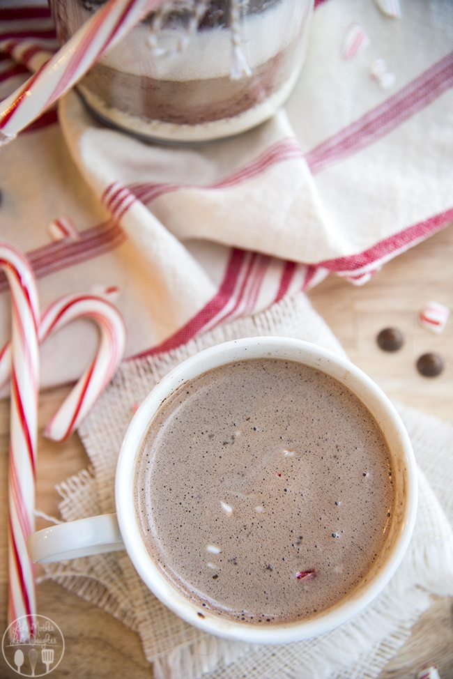 Hot Chocolate Mix - this delicious 3 ingredient hot chocolate mix is perfect for a chilly day, or served up in a cute jar as a gift!