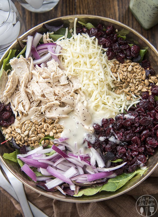 chicken cranberry and sunflower salad 5