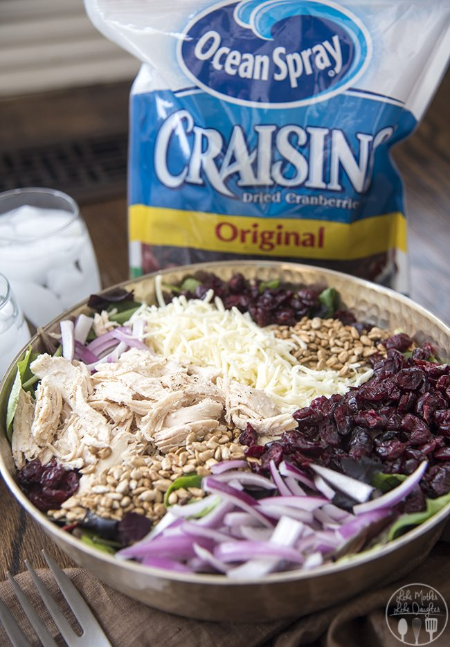 chicken cranberry and sunflower salad 7